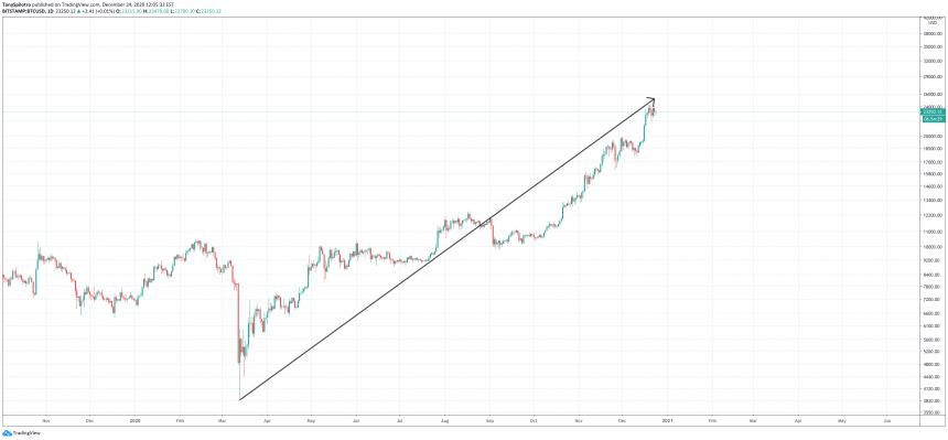bitcoin shark tank