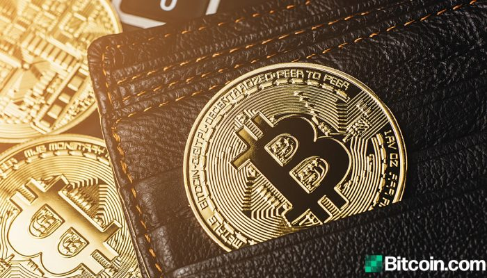Microstrategy Scoops up 262 Bitcoin, Treasury Holds 91K BTC at an Average of $24K per Coin