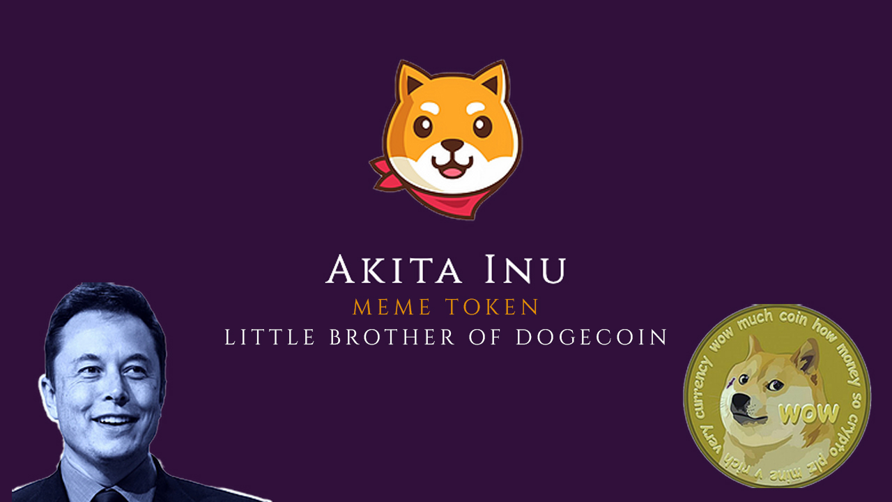 Akita Inu: Is It the Next Dogecoin?