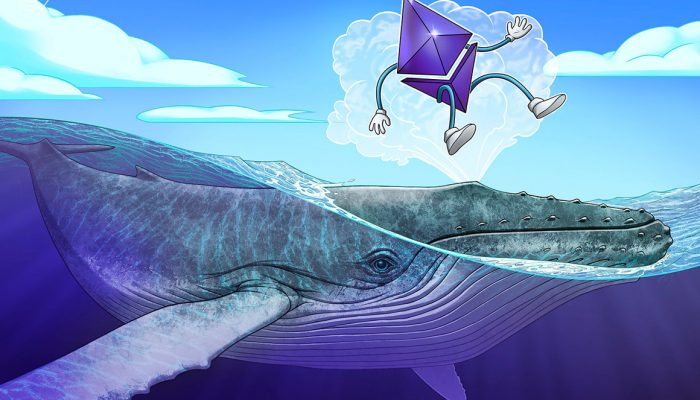 Deep diving with Ethereum whales