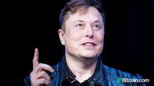 Elon Musk Sees Dogecoin as His 'Stimulus for People Kicked by Pandemic' but Cautions About Crypto Investing